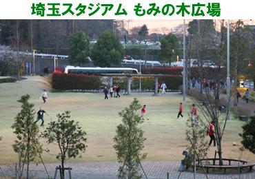 mominoki.jpg